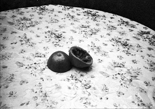 Natura morta con pompelmo di marta panzeri