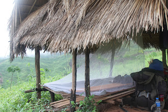 Photo: Tinklas nuo uodų dabar tapo kasdienybe.  The mosquito net is used every day now.