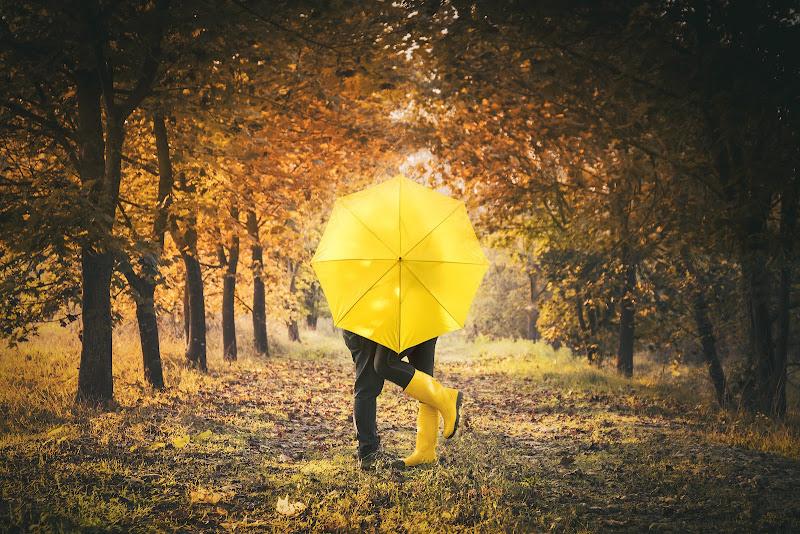 Yellow di Madison