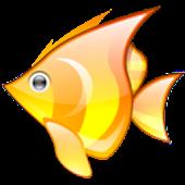 AquaPalm (gestion aquarium)