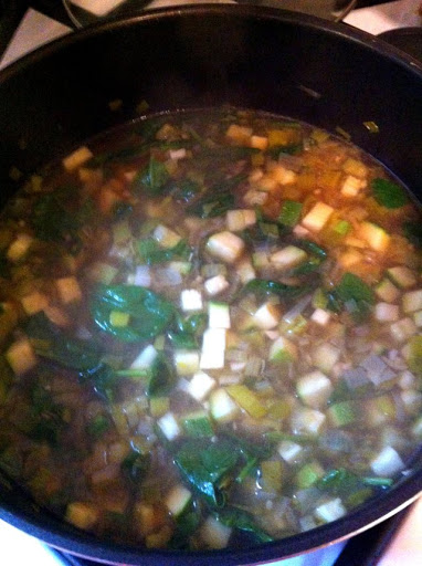 Elimination Diet Vegetable Soup