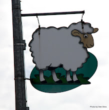 Photo: (Year 2) Day 247 - A Lovely Sign In the Town of Otorohanga