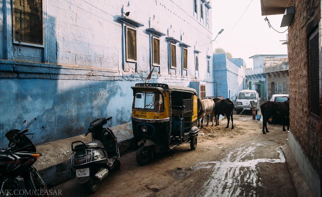 Синий город, Джодхпур
