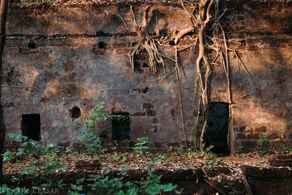 Реди форт, северный Гоа, Индия