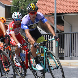 Primož Roglič in Tour of Slovenia 2018 by Igor Martinšek - Sports & Fitness Cycling ( skofja loka, slovenia, primoz roglic, tour of slovenia, cycling )