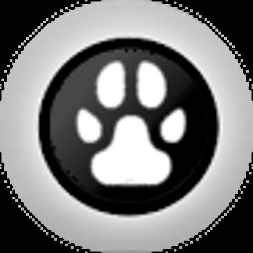 Nikas avatar image