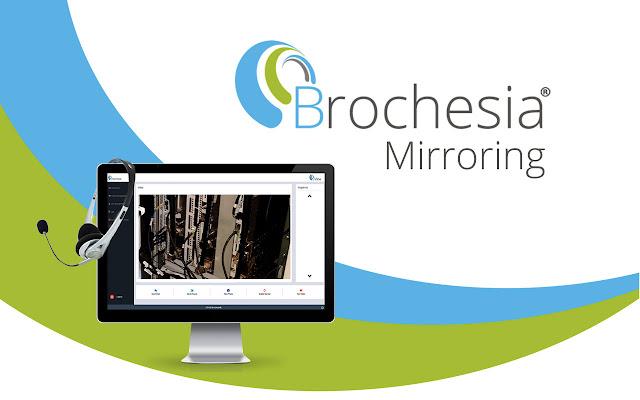 Brochesia Mirroring