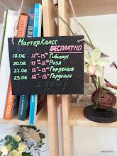 Photo: Бесплатные мастер-классы сертифицированного мастера-инструктора по лепке из глины Deco Надежды Мамаевой на Moscow Flower Show