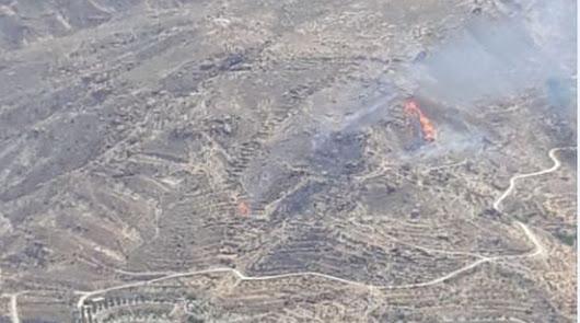 Extinguido el incendio forestal declarado en Terque