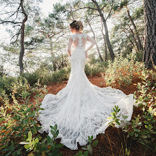 Wedding photographer Mikhail Alekseev (MikhailAlekseev). Photo of 23.01.2017