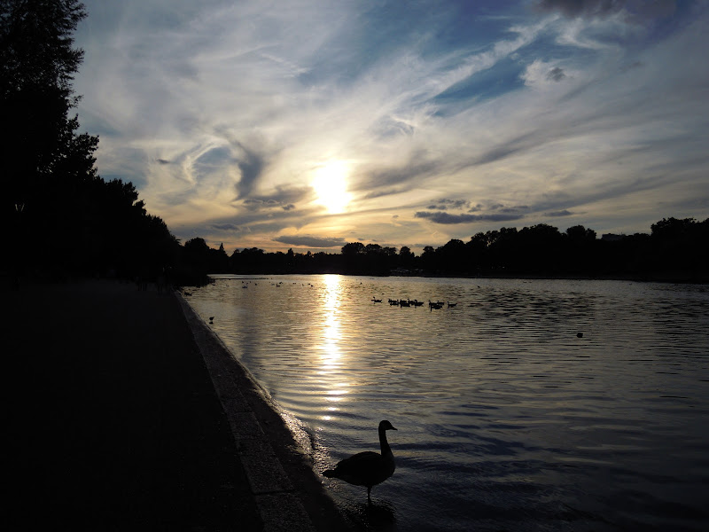 Sunset - Hyde Park di Eleesa