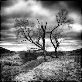 by David Bevan - Black & White Landscapes