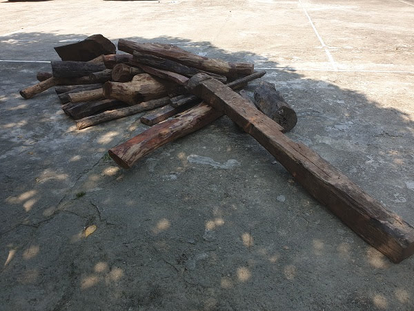 Số gỗ giấu trong xe