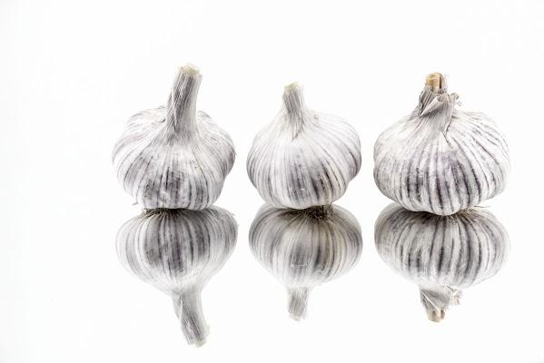 Vestiti di bianco in tre di Diana Cimino Cocco