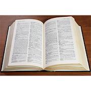 Основы Латинского языка