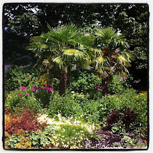 Photo: A paradise spot in Rocky Point Park #intercer #park #garden #tropical #paradise #warm #summer #vacation #nature #instanature #green #palm #outdoor #outdoors #tree #trees #flower #flowers #scene #island - via Instagram, http://instagr.am/p/NdUdpqJfnD/