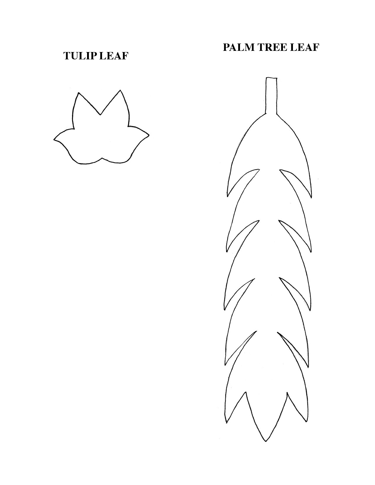Photo: Pattern for tulip leaf and palm tree leaf.