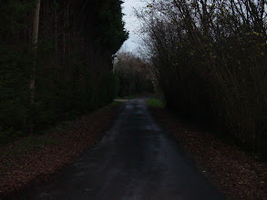 Photo: Here we are at dusk, looking at the very narrow lane leading to the house. It seems impossible that two cars could use the road at once, but we made it work several times, even with our good-sized van!