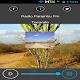 Rádio Parambu FM (app)