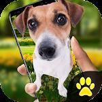 Dog on Screen Simulated - iDog Icon