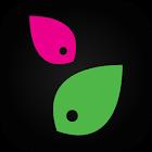 modnaKasta — интернет магазин одежды и обуви icon