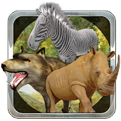 Animals Hunting Quest