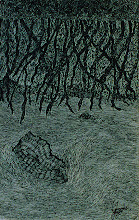 "Photo: Illusive Perceptions 11"" x 5"" 2000 - 2004 Pen & Ink on paper"