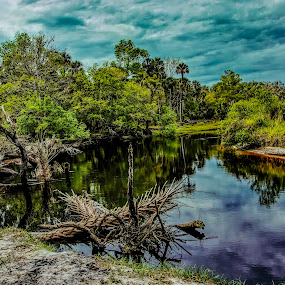 by Rob Whidden - Landscapes Waterscapes