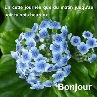 Message de bonjour - náhled