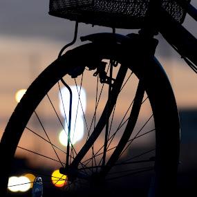 village bicycle by Baka No Hito - Transportation Bicycles
