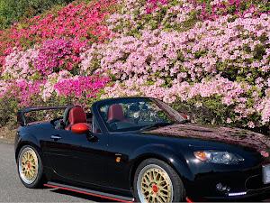 ロードスター NCEC RS RHT 6MTのカスタム事例画像 ひきさんの2020年04月25日10:18の投稿