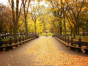 """Photo: """"That delectable crunch...""""  Autumn in Central Park. New York City  View the writing that accompanies this photo here:  http://nythroughthelens.com/post/10609999499/autumn-in-central-park-new-york-city-i-was"""
