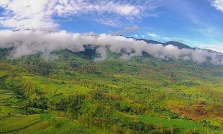Gayo Lues, Aceh