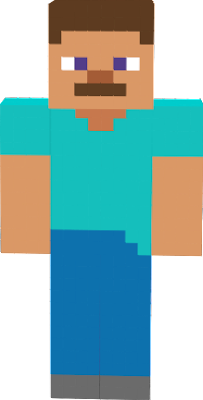 is the default skin of minecraft but plastic edition