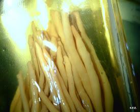 Photo: Clavaria -- in jar