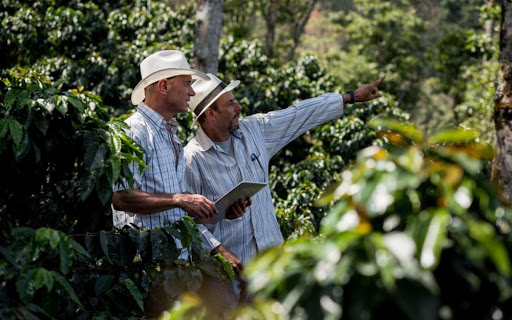 Exploring quality, profitability & crop nutrition for coffee farmers