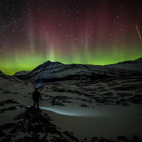 The Auroras at Athabasca by Craig Brown - Landscapes Starscapes ( mountain, canada, alberta, northern lights, aurora borealis, shooting star, image, scenic, landscape, photo, photography, picture, mountains, nature, snow, athabasca glacier, craig, photographer, rockies, craig brown, jasper national park )