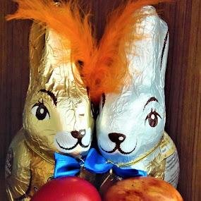 chocolate bunnies by Elenka Smilenova - Public Holidays Easter ( easter eggs rabbits )