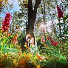Wedding photographer Dmitriy Prosvirnikov (dmitry0609). Photo of 29.05.2016