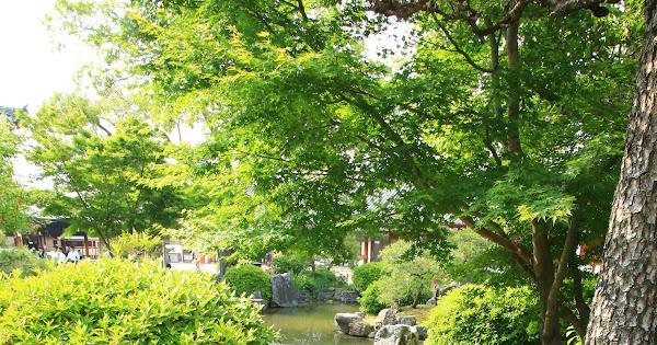 99. Rengeou-in(Sanjusangen-do) (100 Japanese Garden in Kyoto I recommend)