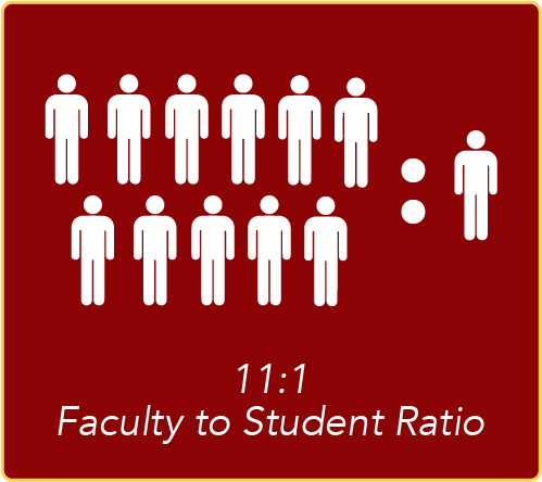 11:1 Faculty to Student Ratio
