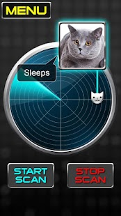 Radar What Makes Cat Joke Screenshot