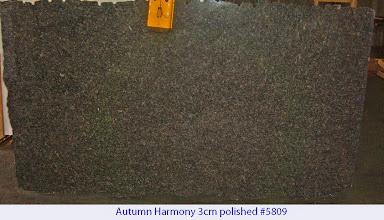 Photo: Autumn Harmony lot# 5809