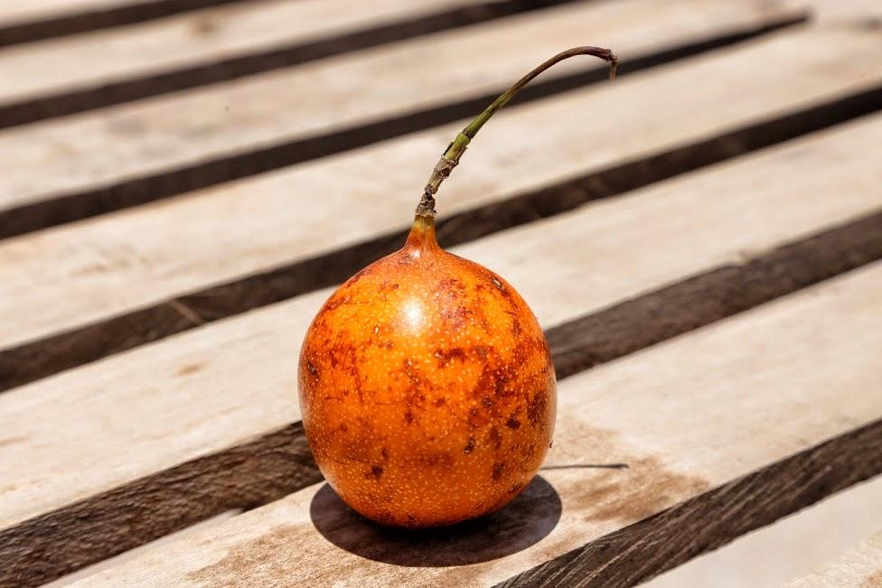 Egzotyczne owoce, Granadilla