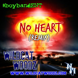 Cover Art for song No Heart (Remix)