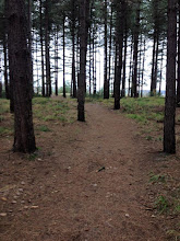 Photo: 15/11/2015 - Kraftman Trail Maasmechelen