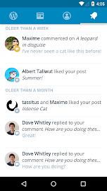 WordPress Screenshot 4