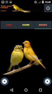 Canarytrain for PC-Windows 7,8,10 and Mac apk screenshot 4