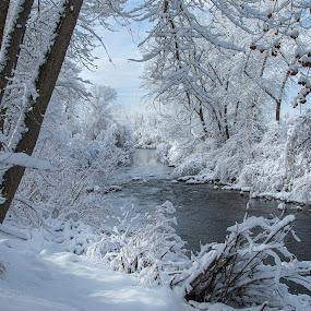 Winter Wonderland by Karin Bennett - Landscapes Weather ( winter, cold, ice, snow, river )