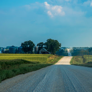 12 ls umn farm and road.jpg